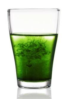 liquid_chlorophyll